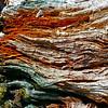 Rainbow Wood #1: Table Mountain