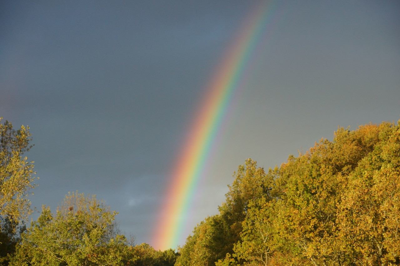 I can't remember seeing a rainbow's full spectrum so clearly