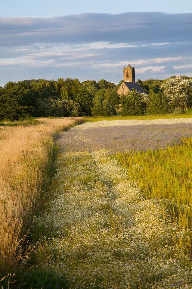 Rainford Landscape 1