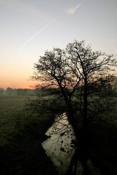 Crank Sunrise