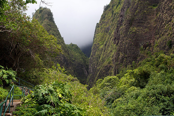 Looking at the cleft between the wall rocks of the West Maui Mountains caldera and the spire of the 'Iao Needle.