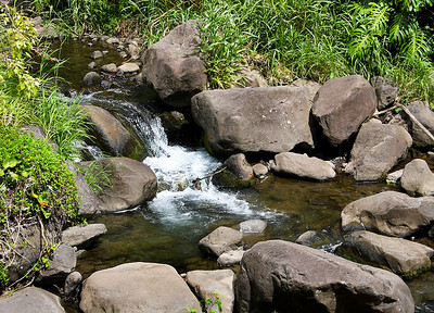 The stream that runs along the floor of the 'Iao Valley is choked with rubble from the erosion of the  volcanic rocks of the floor and walls of the West Maui Mountains caldera.