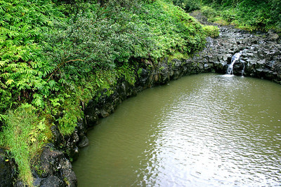 A runoff pond carved into the basalt of a hillside near Kaumahina Wayside Park, Maui.