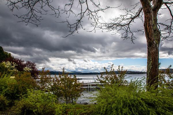 Rainy Day--Bellevue--