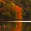 Radnor Lake