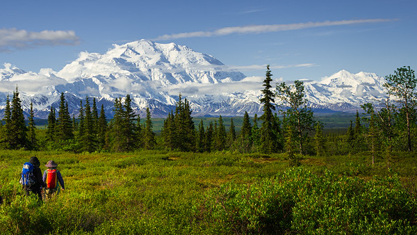 Hiking towards Mount Denali