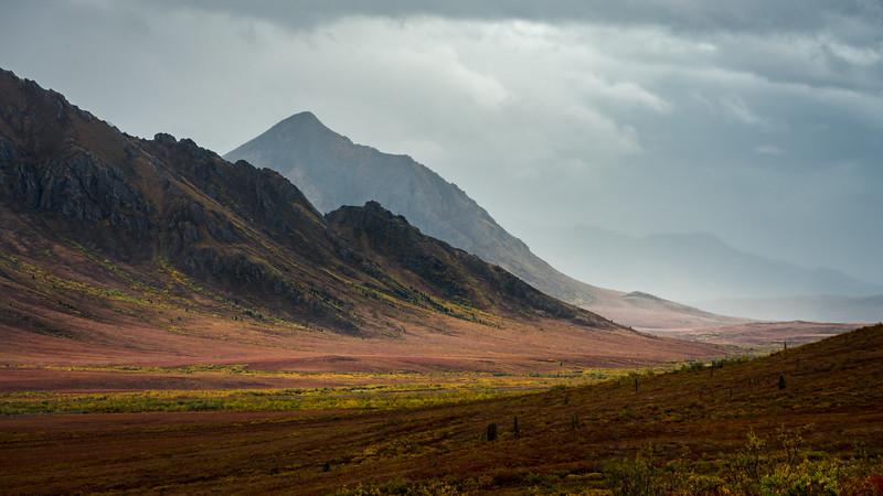 """Into the misty valley"" - www.rajguptaphotography.com"