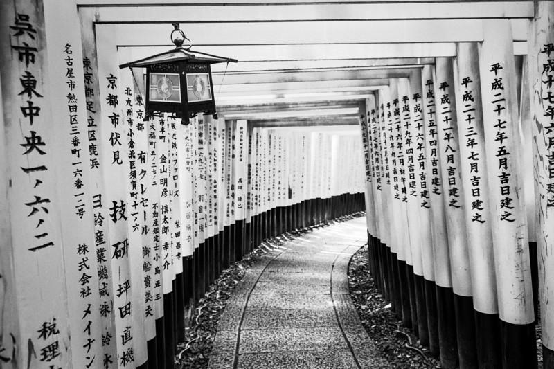 The thousand gates