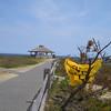 MW1 - Marconi Wireless Site<br /> Welfleet, MA