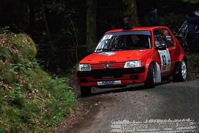 Rallye des Vallées 2013