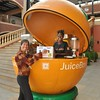 Nicole gets a kick out of finding Egyptian oranges for the delicious orange juices as Hub Mall outside of Nairobi, Kenya.