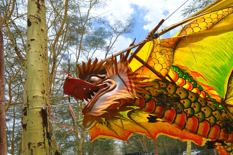A dragon adorns the Soysambu Wild Festival in Kenya supporting wildlife and peace.