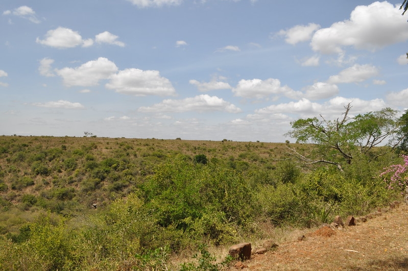 View of the Nairobi National Game Park from the Kitengela home where we stayed our first week of shooting.