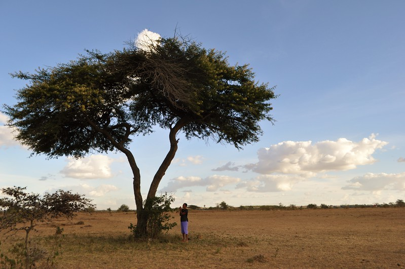 Kitengela neighbor and Lorraine's friend Elizabeth has to go out under the Acacia to get service sometimes.