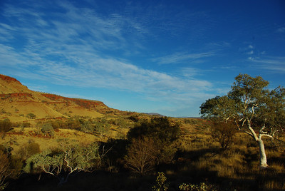 East Pilbara early morning