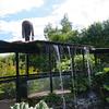 Africa Garden waterfall