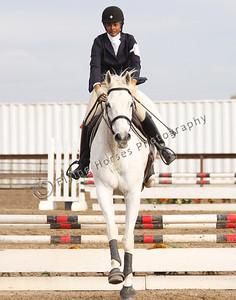 ContinentalBid_20121118_1840