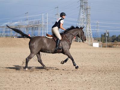 Tarina_20121117_0690