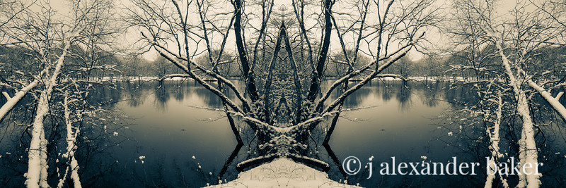 Riparian Kaleidoscape-7 Winter Branches