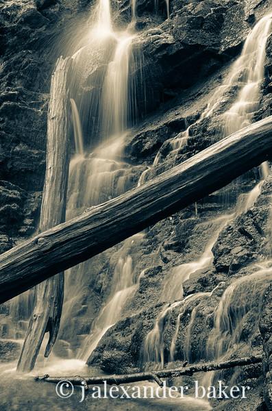 Ramapo Falls log