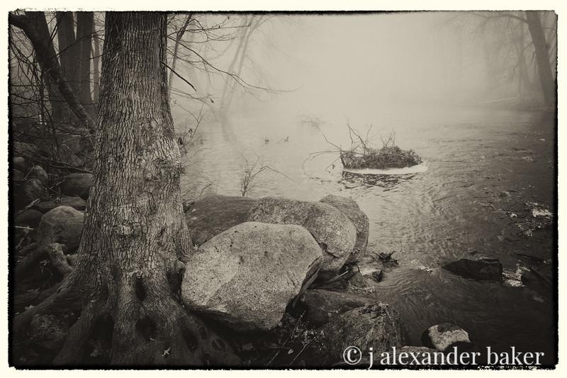 Stonefoot Tree