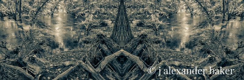 Riparian Kaleidoscape-6 Convergence