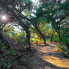 Shady Oaks Trail Sunset | Ramona, CA