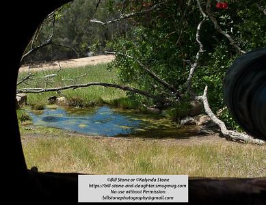 Views of Ramrod Ranch