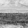 eastern sierra rangeland ...