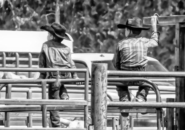 bull ridin' brothers ...