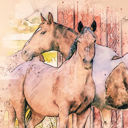 barnyard buddies ...