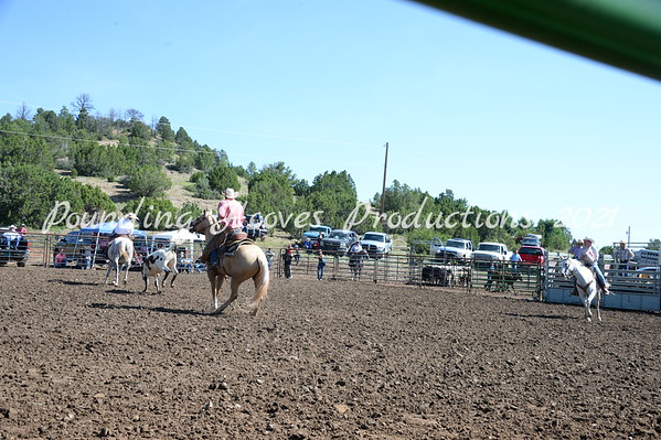 San Miguel County Fair Ranch Rodeo