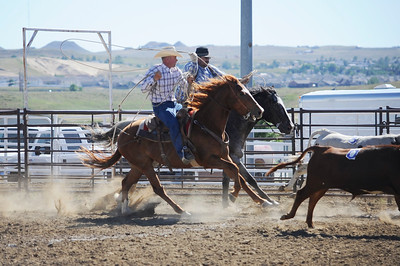 2016 Wyo Wild Ride Ranch Rodeo and Horse Sale