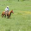 20150430-2015 Link Ranch-311