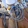 20150430-2015 Link Ranch-105