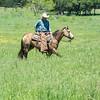 20150430-2015 Link Ranch-310