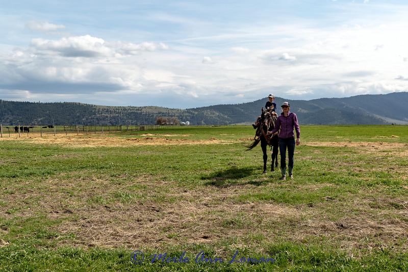 A Montana View Fine Art Photography