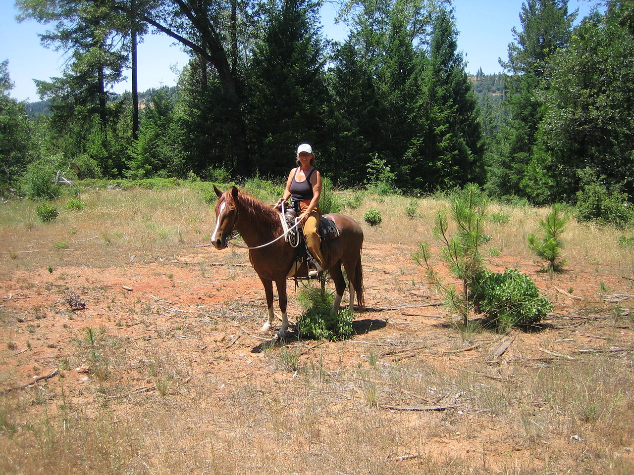 Briosa and me on trail ride summer 2008