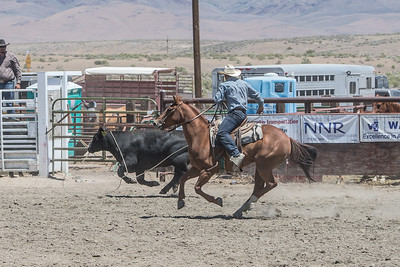 Big Loop Cow Roping