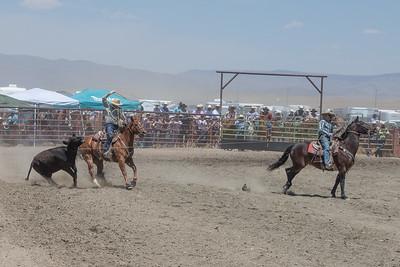 muley team rope-9074