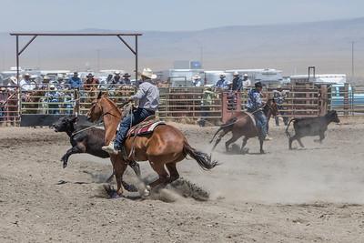 muley team rope-9063