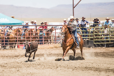2013 McDermitt Steer Stopping