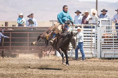 2013 McDermitt Ranch Broncs