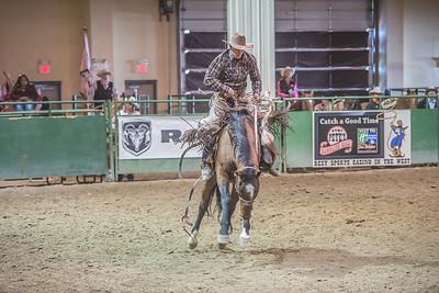 Stock Saddle Broncs