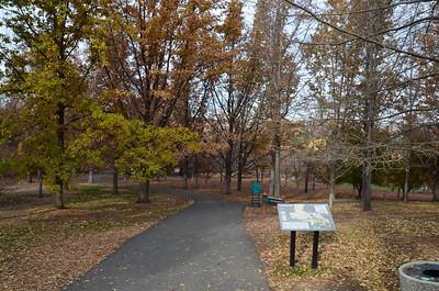 P00001_DSC_0084_Arboretum