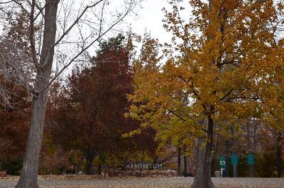 P00000_DSC_0117_Arboretum_sign