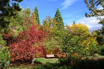 Rancho San Rafael - Arboretum - October 14, 2016