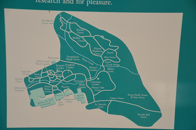 DSC_0088_Arboretum_and_Botanical_Garden_Trail_Map