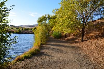 DSC_0234_Path_beside_the_pond
