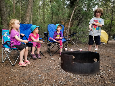 2018-05 Redstreak Campground, Radium BC